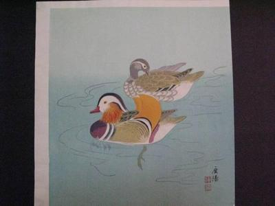 向陽: Ducks — カモ - Japanese Art Open Database