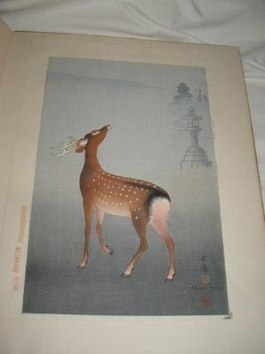 向陽: Stag and Lantern - Japanese Art Open Database
