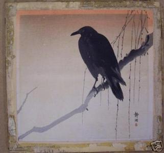 静湖: Crow on branch - Japanese Art Open Database