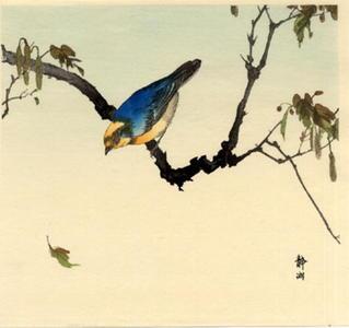 Seiko: Finch on Plane Tree - Japanese Art Open Database