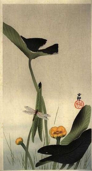 Shoson Ohara: A Dragonfly resting on a Lotus stem - Japanese Art Open Database