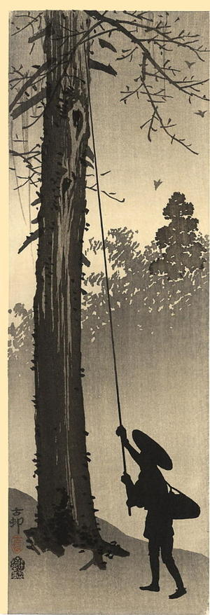 Shoson Ohara: A man harvesting a nest - Japanese Art Open Database