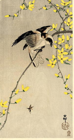 Shoson Ohara: Bird and Insect - Japanese Art Open Database
