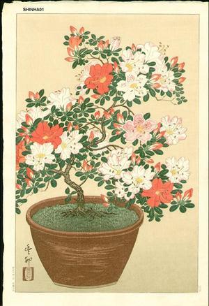 Shoson Ohara: Bonsai azelia - Japanese Art Open Database