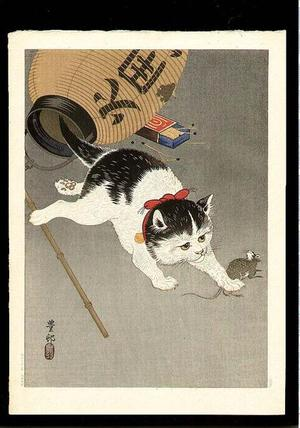 Shoson Ohara: Cat - Japanese Art Open Database