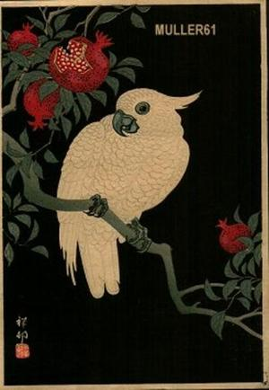 Shoson Ohara: Cockatoo and Pamegranate - Japanese Art Open Database
