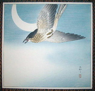 Shoson Ohara: Cuckoo In Flight - Japanese Art Open Database