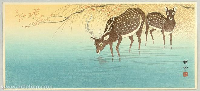 Shoson Ohara: Deer in Shallow Water - Japanese Art Open Database