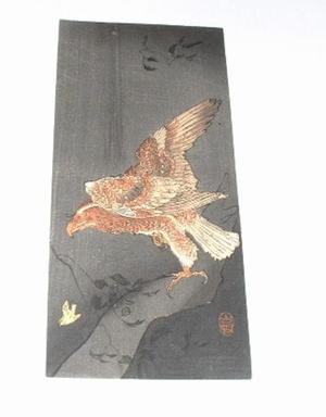 Shoson Ohara: Eagle and prey - Japanese Art Open Database