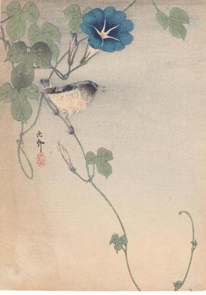 Shoson Ohara: Finch and Morning Glory - Japanese Art Open Database