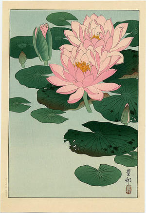 Shoson Ohara: Flowering Water Lilies - Japanese Art Open Database