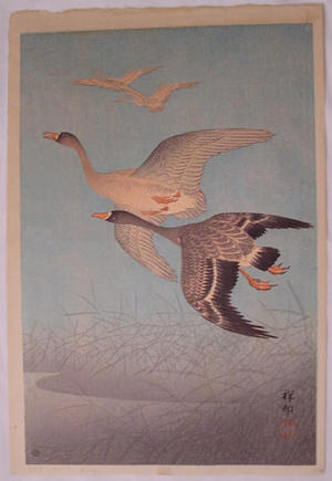 Shoson Ohara: Flying Geese and Reeds - Japanese Art Open Database