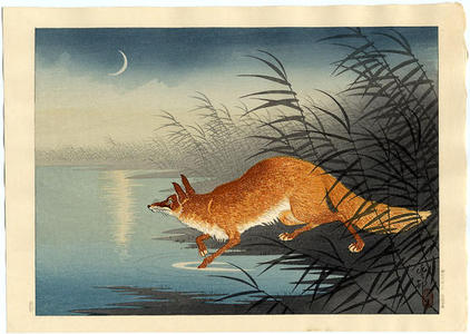 Shoson Ohara: Fox in the Reeds - Japanese Art Open Database