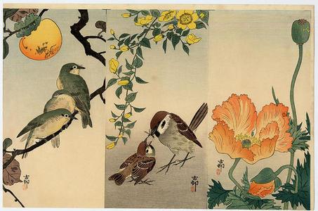 Shoson Ohara: Kacho-e uncut set 1 - Japanese Art Open Database