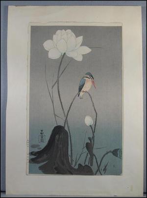 Shoson Ohara: Kingfisher and flower - Japanese Art Open Database