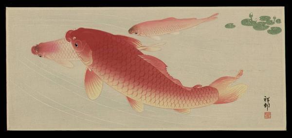 Shoson Ohara: Koi Carp 2 - Japanese Art Open Database
