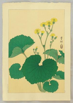 Shoson Ohara: Ligularia - Japanese Art Open Database