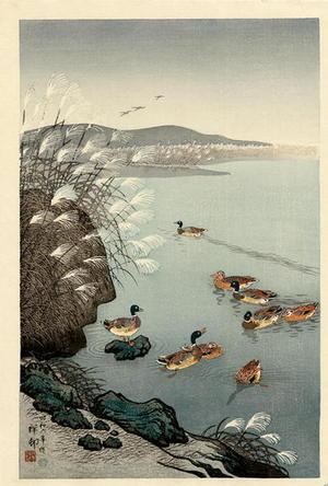Shoson Ohara: Mallard Ducks in Coastal Scene - Japanese Art Open Database