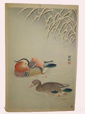 Shoson Ohara: Mandarin Ducks in Snow - Japanese Art Open Database