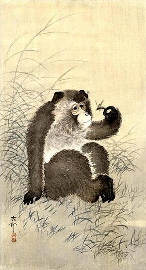 Shoson Ohara: Monkey and Dragonfly - Japanese Art Open Database