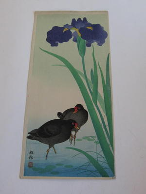 Shoson Ohara: Moorhen Birds - Japanese Art Open Database