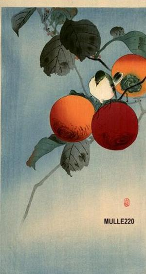 Shoson Ohara: Nuthatch and Persimmon - Japanese Art Open Database