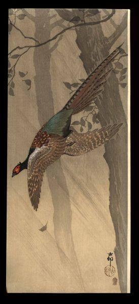 Shoson Ohara: Pheasant in flight between trees - Japanese Art Open Database