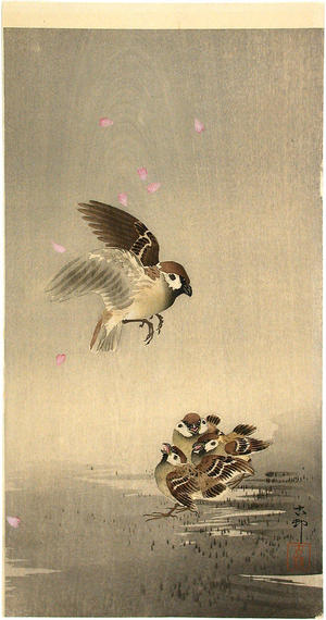Shoson Ohara: Sparrow and chicks - Japanese Art Open Database
