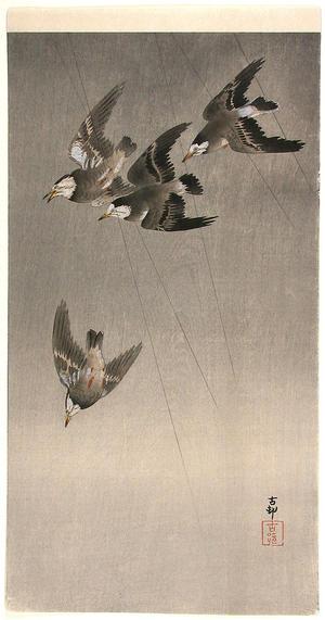 Shoson Ohara: Starlings in flight - Japanese Art Open Database