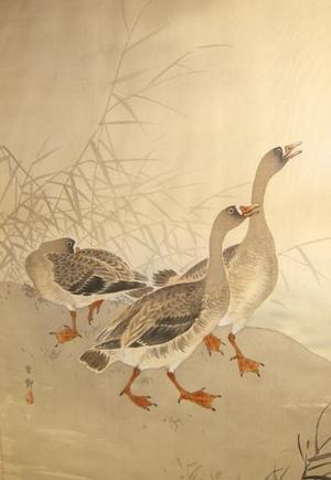 Shoson Ohara: Three Geese - Japanese Art Open Database