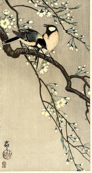 Shoson Ohara: Tits on Cherry Branch - Japanese Art Open Database