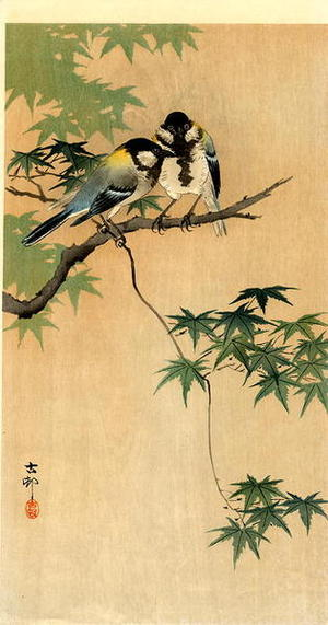 Shoson Ohara: Tits on Maple - Japanese Art Open Database
