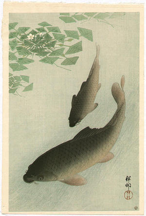 Shoson Ohara: Two Carp and Blooming Water Plants - Japanese Art Open Database