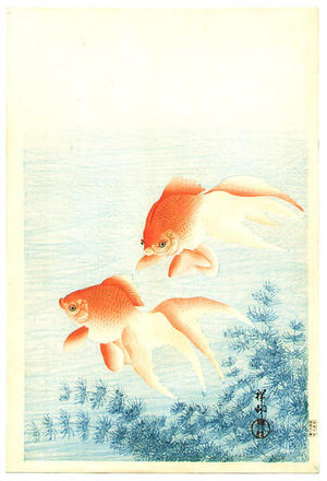 Shoson Ohara: Two Goldfish and waterweed - Japanese Art Open Database
