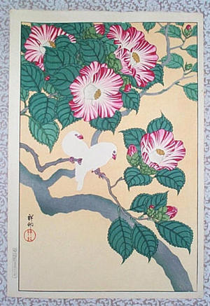 Shoson Ohara: Two small parrots - Japanese Art Open Database
