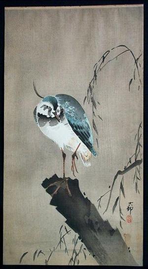 Shoson Ohara: Unknown, bird perched on broken tree - Japanese Art Open Database