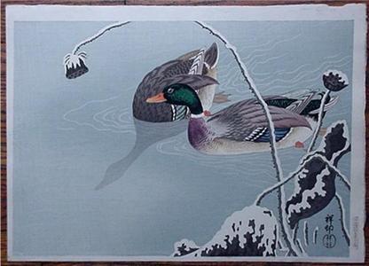 Shoson Ohara: Unknown, ducks in the winter - Japanese Art Open Database