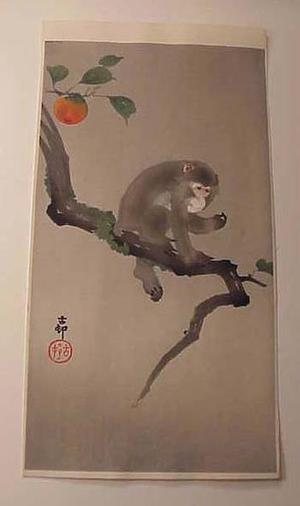 Shoson Ohara: monkey in the persimmon tree - Japanese Art Open Database