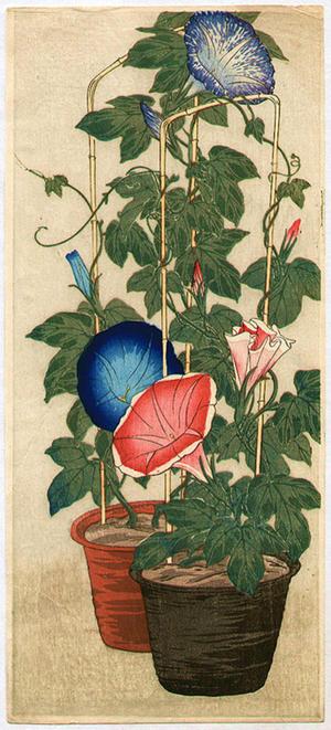 Shotei Takahashi: Morning Glories - Japanese Art Open Database