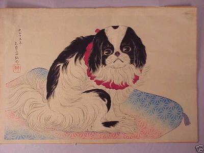 Shotei Takahashi: Pug on a Cushion - Japanese Art Open Database