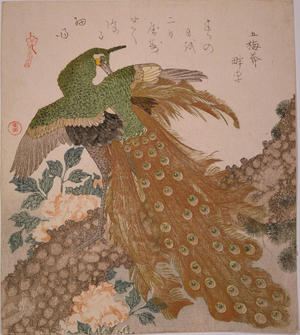 Kubo Shunman: Peacock and Penoies — 牡丹に孔雀 - Japanese Art Open Database
