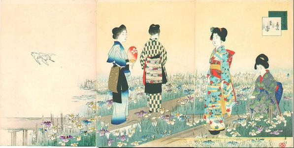 宮川春汀: June — 其六 菖蒲 - Japanese Art Open Database