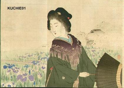 Suzuki Kason: Ayame — あやめ - Japanese Art Open Database