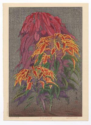 Taisui Inuzuka: Coleus - Japanese Art Open Database