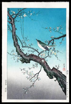 風光礼讃: Plum Nightingale- Oban - Japanese Art Open Database