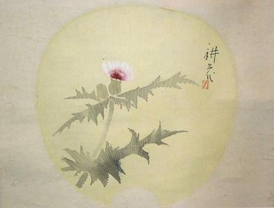 Yamamura Koka: Fan with Thistle — 薊図団 - Japanese Art Open Database