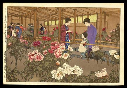 吉田博: Tokugawa Peony Garden - Japanese Art Open Database