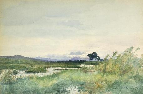 吉田博: Open bushland by stream - Japanese Art Open Database