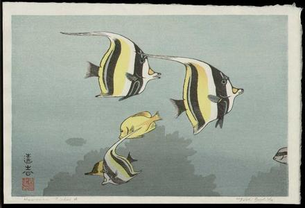吉田遠志: Hawaiian Fishes A - Japanese Art Open Database