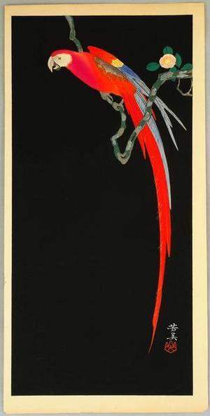 Yoshimi: Macaw on Flowering Branch - Japanese Art Open Database